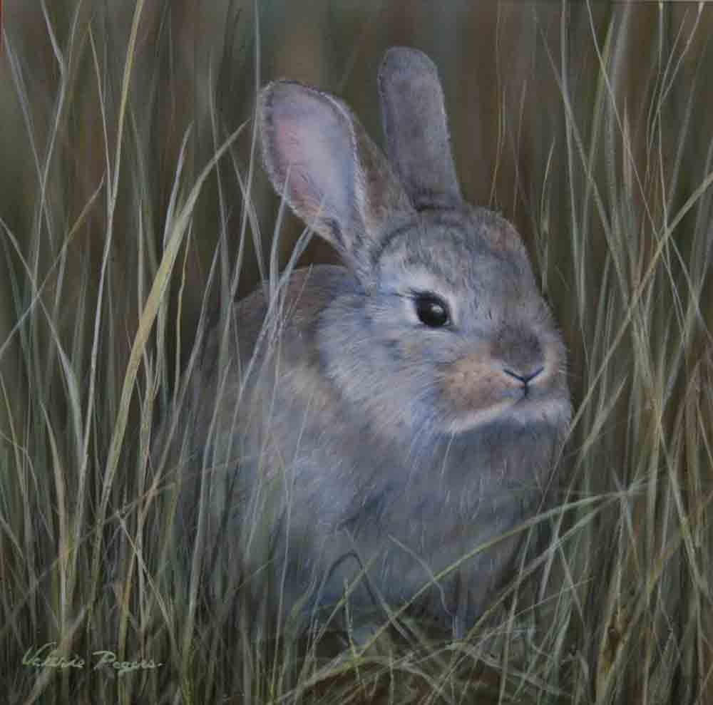 Valerie Rogers' painting of bunny