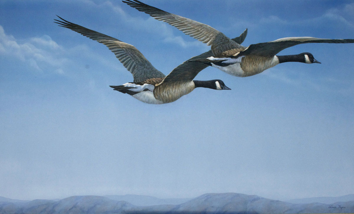 Painting of Two high flying Geese by Valerie Rogers