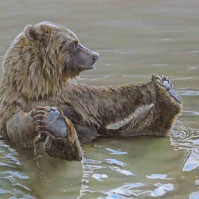 painting of grizzly in water