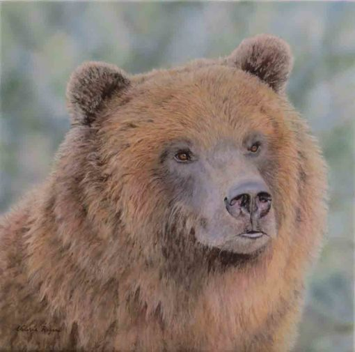 Painting of Grizzly by Valerie Rogers