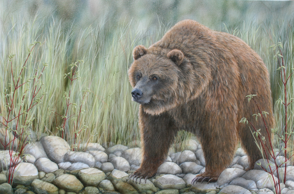 Bear by water painting