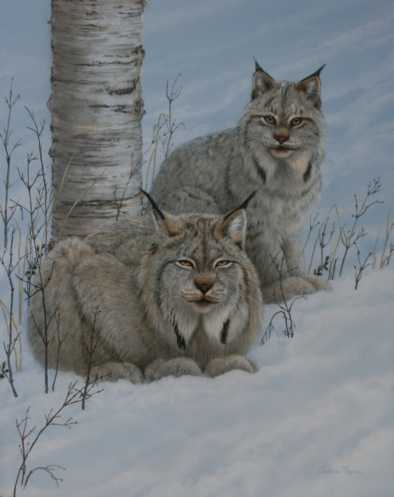 Painting of two lynxes in the snow by Valerie Rogers