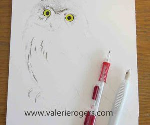 Step by Step Owl Painting