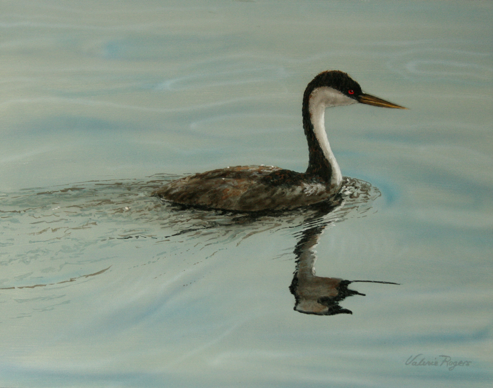 Western Grebe painting by Valerie Rogers