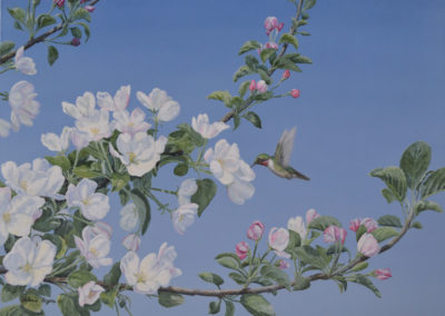 Spring Blossom 18×24″ $950 CAD