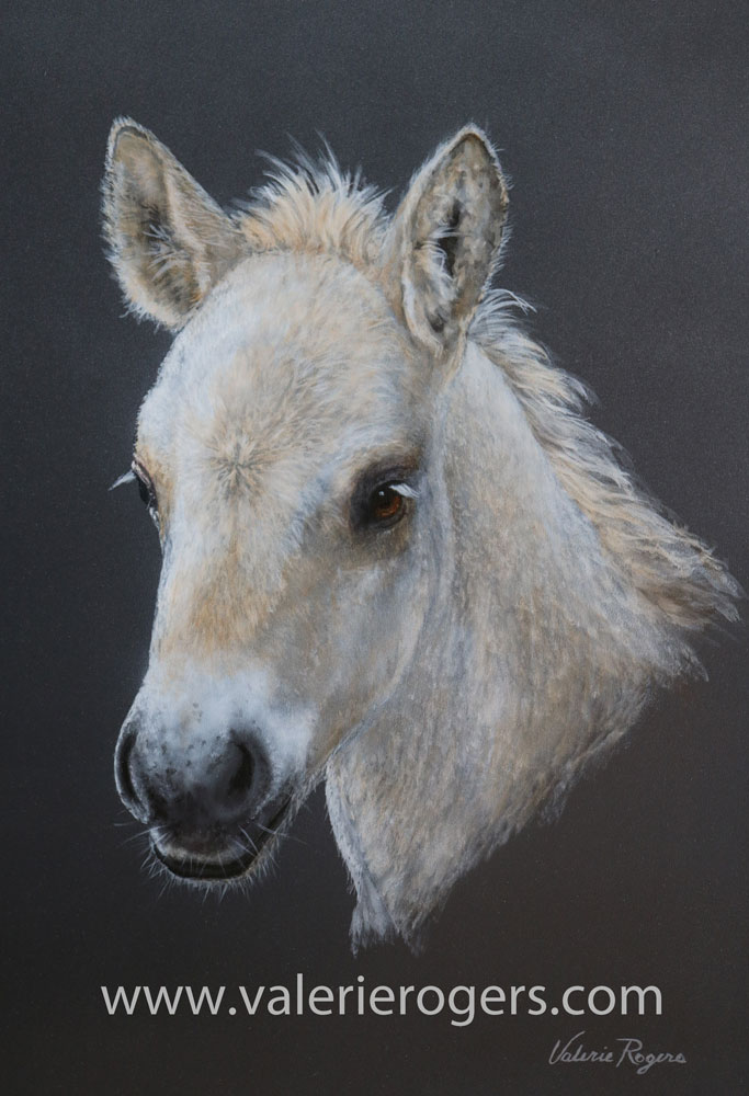 Valerie Rogers painting of foal