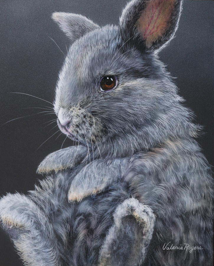 Wee grey bunny rabbit painting by Valerie Rogers
