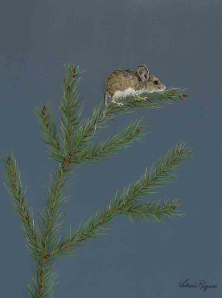 Mouse at tiptop of Tree by Valerie Rogers