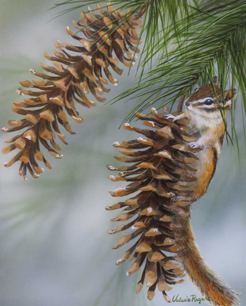 chipmunk pinecone by Valerie Rogers