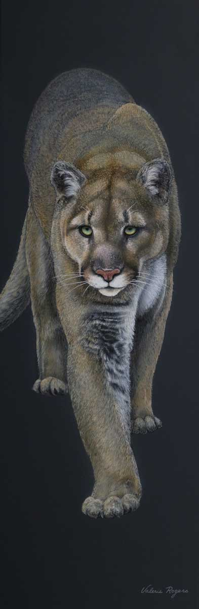painting by Valerie Rogers of puma