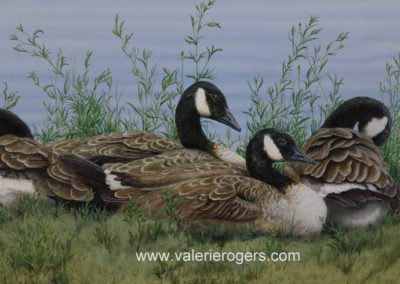 The Wild Ones at Rest 18×36″ $1595 CAD