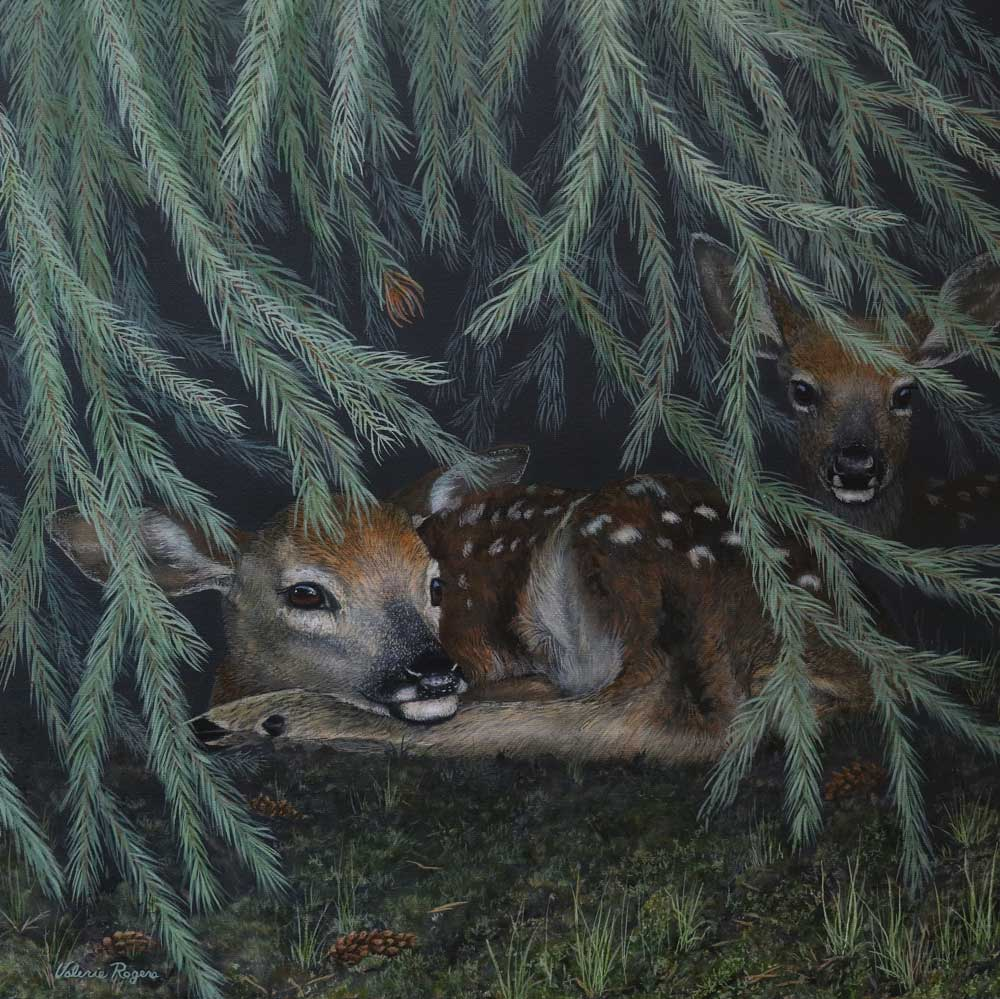 Fawns Under the Tree by Valerie Rogers