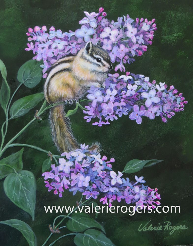 chipmunk, lilacs by Valerie Rogers