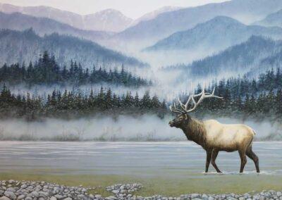 Misty Elk Sold