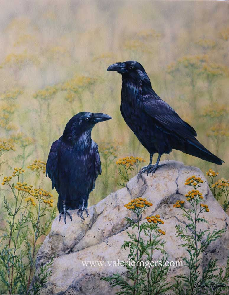 two ravens in tansy painted by Valerie Rogers